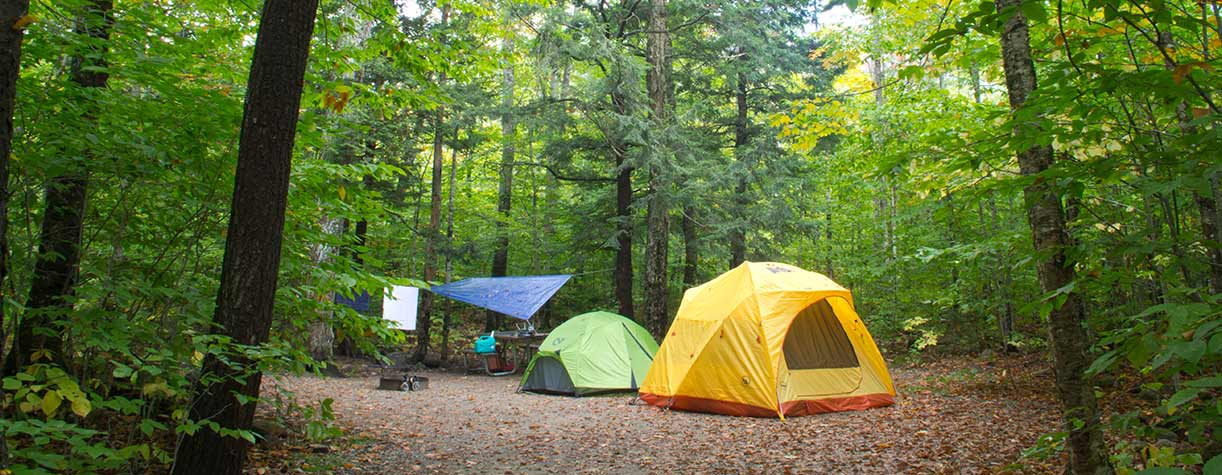 Dry River Campground