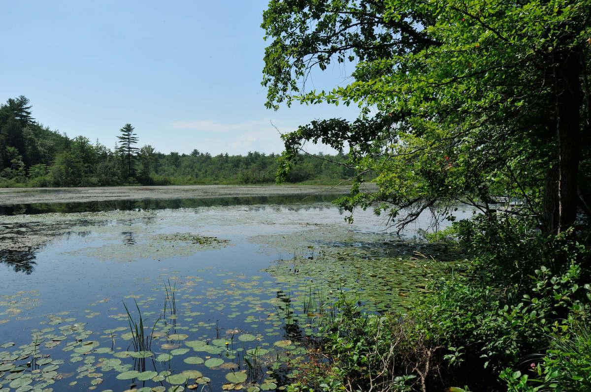 Tuxbury Pond RV Resort